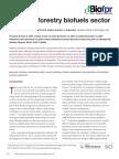 Forestrybiofuels.pdf