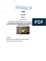 Parashat Tetzavéh # 20 Inf 6017