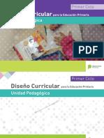 DisenÞo Curricular PBA-UP