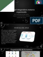 Materia Organizada actividad integradora 2018