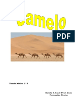 Camelo Muller