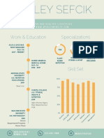 ashley sefcik infographic
