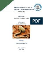 INFORME DE PARASITOS - SILABO.docx