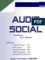 119271435-Audit-Social.docx