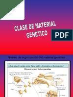 Clase de Material Genético