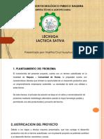 LECHUGA - CULTIVO-HAQUIRA.pdf