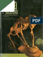 Salud y Sociedad en El México Prehispánico y Precolonial