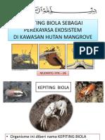 Kepiting Biola