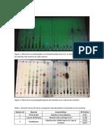 Resultados 1 - Extracción y Separación de Aceites Esenciales Por Cromatografía en Capa Fina