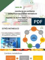 Estresmetabolico.pdf