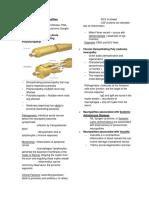 Inflammatory Neuropathies