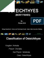 3-OSTEICHTHYES