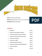 Bailes y danzas mexicanas.pdf
