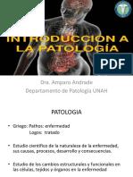 Introducción a La Patologia de Micro