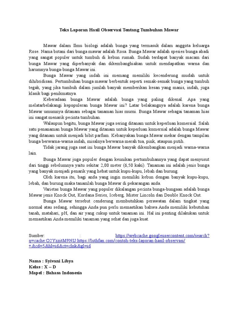 Teks Laporan Hasil Observasi Tentang Tumbuhan Mawar