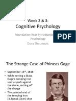 Week 2 & 3 - Cognitive Psychology
