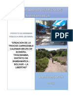 PIP Camino Vecinal Bambamarca