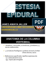anestesiaepidural-100420215110-phpapp02