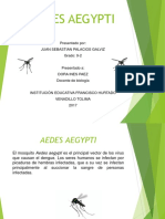 AEDES AEGYPTI.pptx