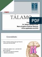 Talamo