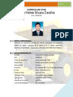 Curriculum Vitae Janse h. Silvana Zevallos Actualizada (2014)