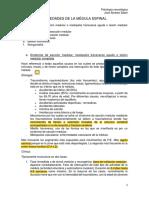 Patologia neurologica 2º