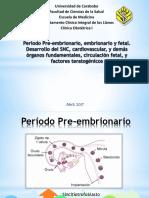 Periodo Pre-embrionario, Embrionario y Fetal