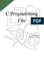 c Programming File