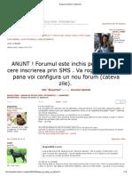 InvertireZaharGica.pdf