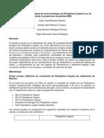 Bacillus Firmus Como Agente de Control Biológico de Phytophtora Capsici Leo