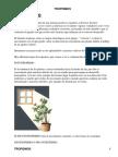 tropismos.en.las.plantas.pdf