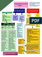 anemie.pdf