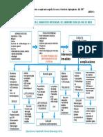 AlgoritmoSindromeFebril.pdf
