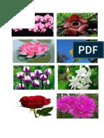 Cara Membuat Bunga Hiasan