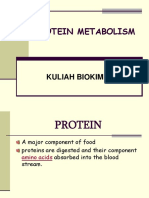 Metabolisme Protein.br