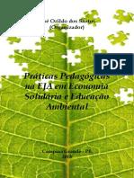 Práticas Pedagógicas Na Eja Em Economia Solidária e Educação Ambiental