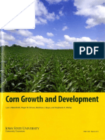 Corn Growth and Development001