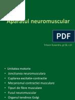 Aparat Neuromuscular