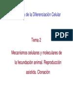 Tema 2 BDC. Fecundacixn. Reproduccixn Asistida. Clonacixn
