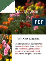 PlantKingdom (1)