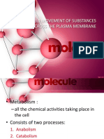 263774898 3 1 the Movement of Substances Across the Plasma Membrane