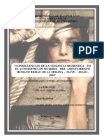 Universidad Nacional San Martin.docx - Sustentacion de Tesis