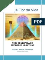 REIKI-DE-LIMPEZA-DE-ENTIDADES-NEGATIVAS.pdf