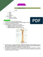 Metabolismo Óseo, Balance Calcio-Fosforo