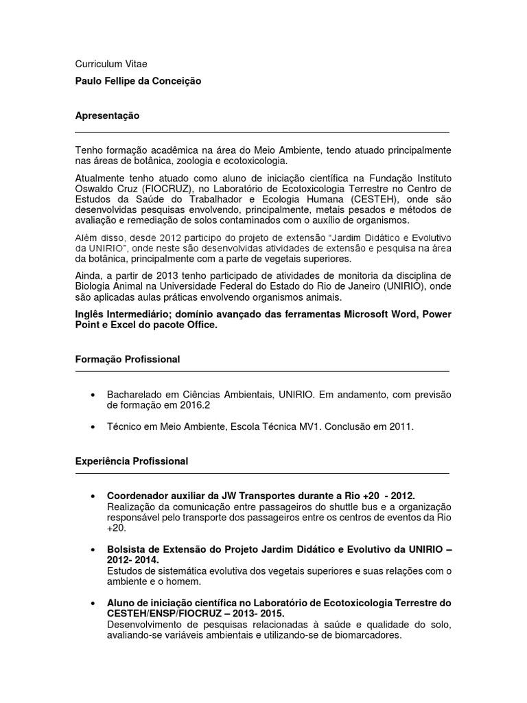 Curriculum Vitae Paulo Fellipe Da Conceicao Docx