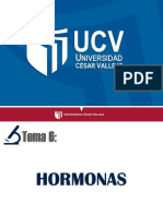 6-HORMONAS-sesión-6