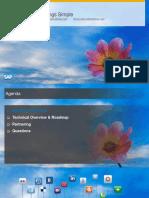 SAP_Fiori.pdf