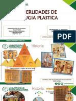 Historia Cirugia Plasticas