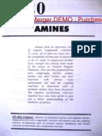 AMN.pdf