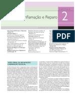 Tut 1 - Fisiopatologia Da Inflamaçao